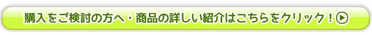 タイダイ染めカップのご購入をご検討の方へ・商品の詳しい紹介はこちらをクリック!