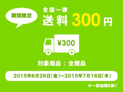 送料一律300円キャンペーン - カラーマーケット