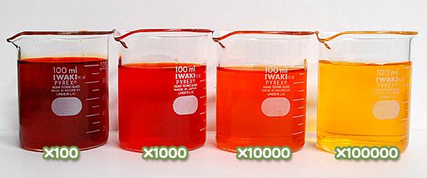 【医薬品、医薬部外品及び化粧品用法定色素】 だいだい色205号 オレンジIIの水溶希釈例(100倍~10万倍)