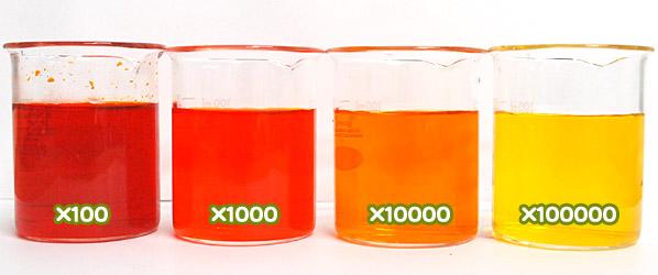 食用色素 - 食用黄色5号 サンセットイエローFCFの水溶希釈例(100倍~10万倍)