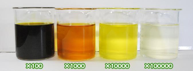 ベニバナ黄色素・サフラワーY1500の水溶希釈例(100倍~10万倍)