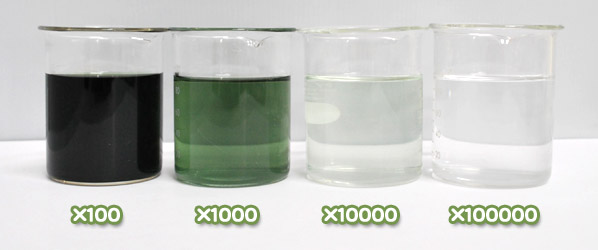 緑色着色料製剤・ハイグリーンFの水溶希釈例(100倍~10万倍)