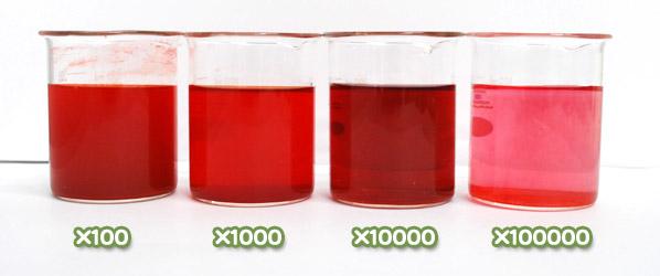 ラック色素・ハイレッドSの水溶希釈例(100倍~10万倍)