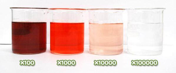 ベニコウジ色素・ダイワモナスLA-Rの水溶希釈例(100倍~10万倍)